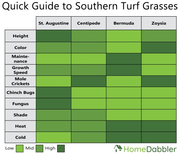 Turf Grass Table